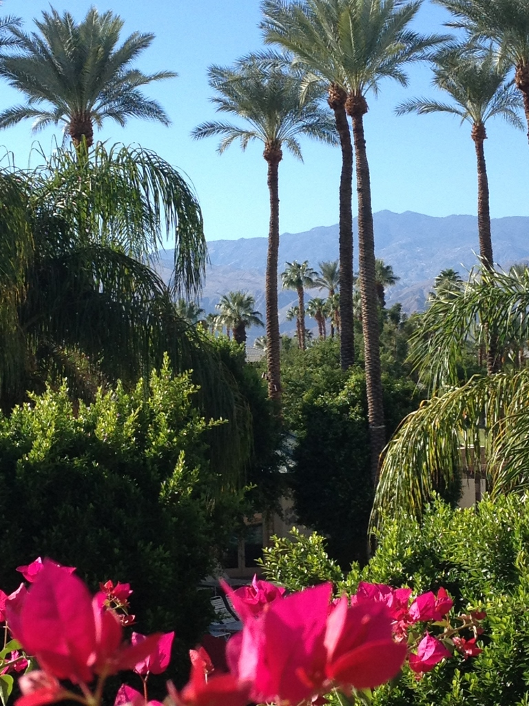 GILD Palm Desert California